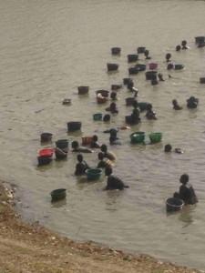 Des pếcheues (femmes, filles et enfants) en plein pêche